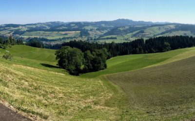 Nel cuore verde dell'Emmental