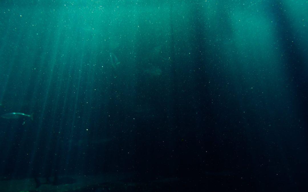 Il mare nel letto (Privé)