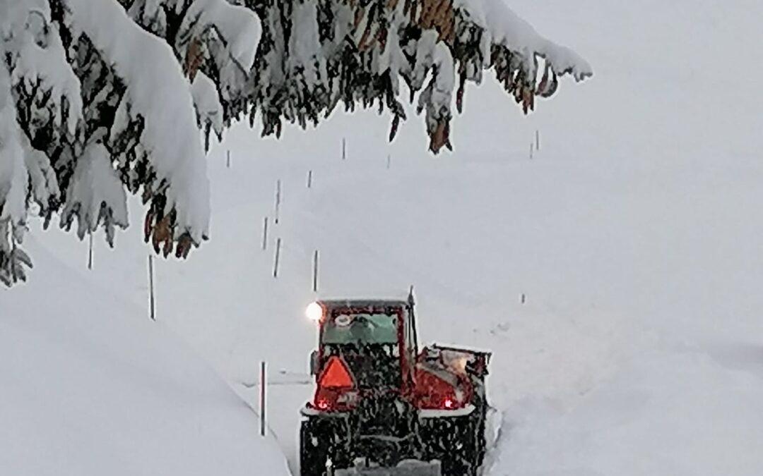 Il bello della neve e il suo contrario